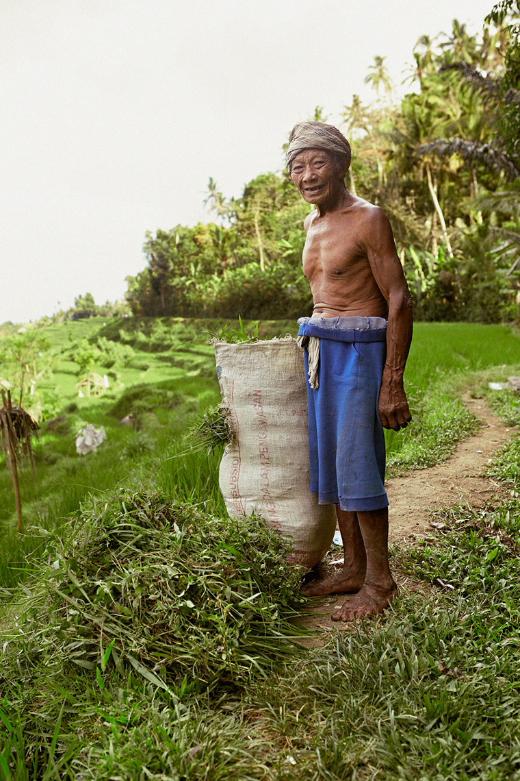 Portrait of rice field worker in Bali